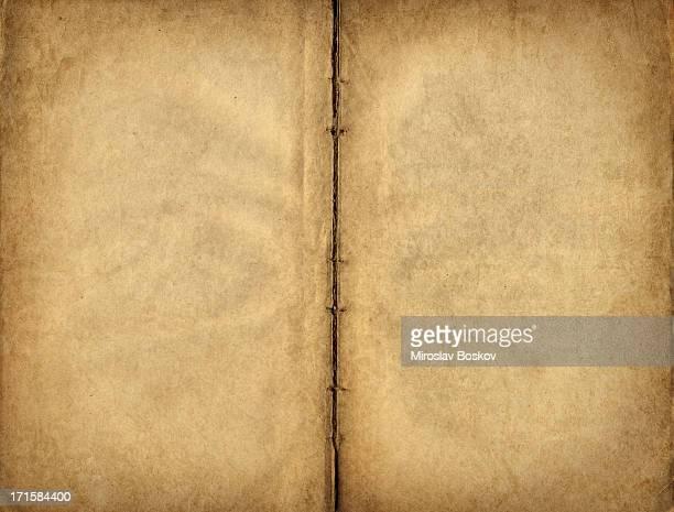 High Resolution Antique Manuscript Blank Parchment Pages