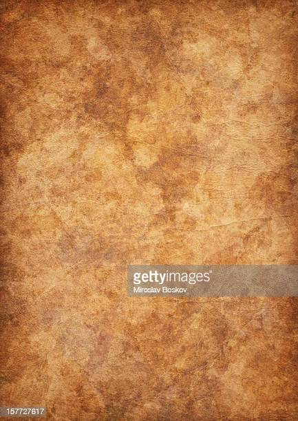 high resolution antique parchment mottled vignette grunge texture - mottled skin stock pictures, royalty-free photos & images