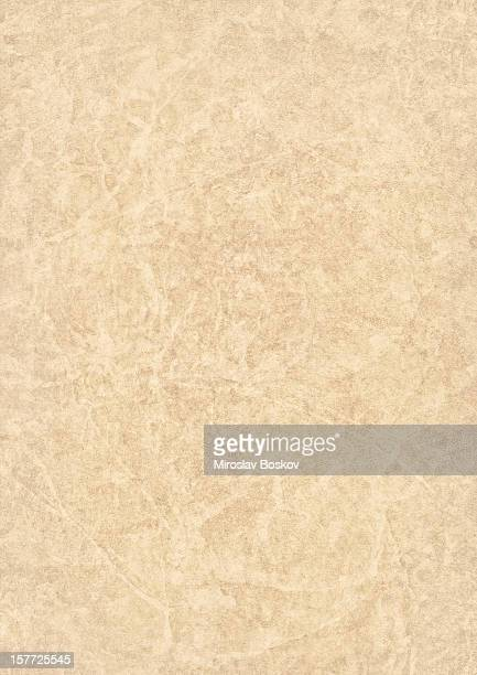 High Resolution Beige Antique Animal Skin Parchment Grunge Texture