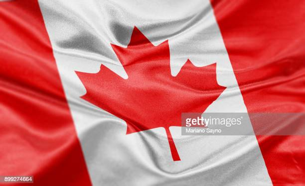 high resolution digital render of canada flag - canada imagens e fotografias de stock