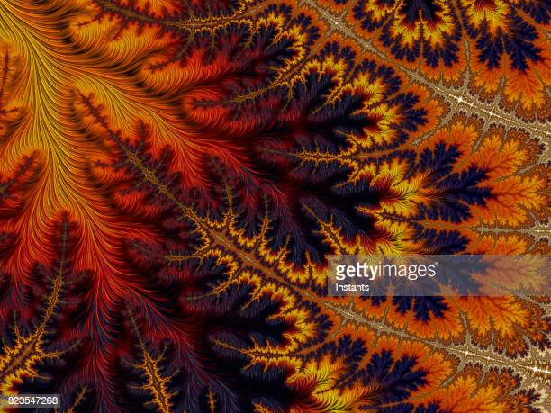 high resolution multi-colored fractal background, which patterns remind those of autumn leaf colors. - maroon stock pictures, royalty-free photos & images