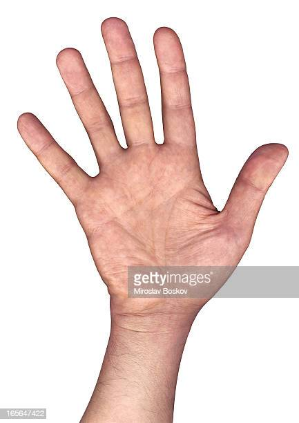 high resolution open human hand palm isolated on white background - waving gesture stock photos and pictures