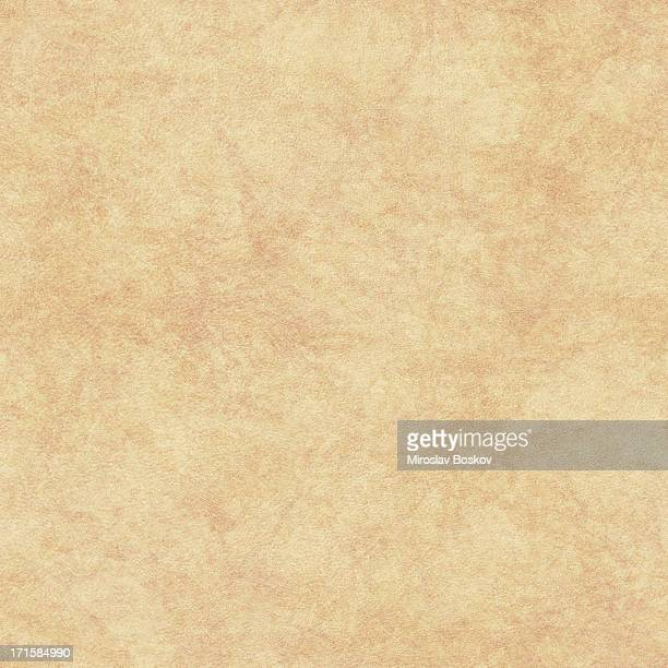 High Resolution Parchment Seamless Texture