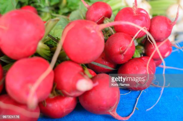 High resolution photography on horizontal radish, there are many varieties of radishes.