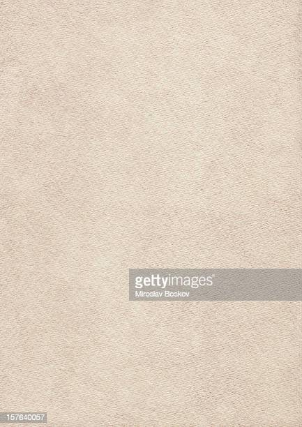 High Resolution Primed Beige Card Stock Watercolor Paper Grunge Texture