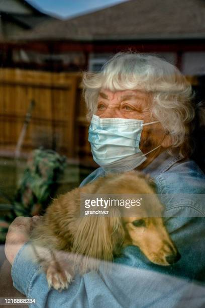 a high risk elderly woman quarantined in her home because of the covid19, corona virus - avoidance stock pictures, royalty-free photos & images