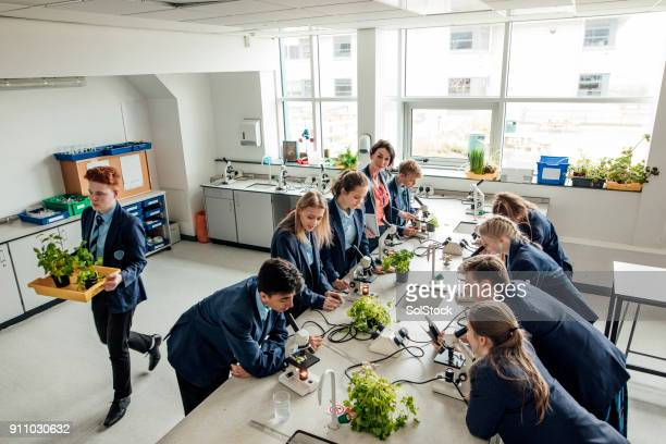 high school classroom - uniform stock pictures, royalty-free photos & images