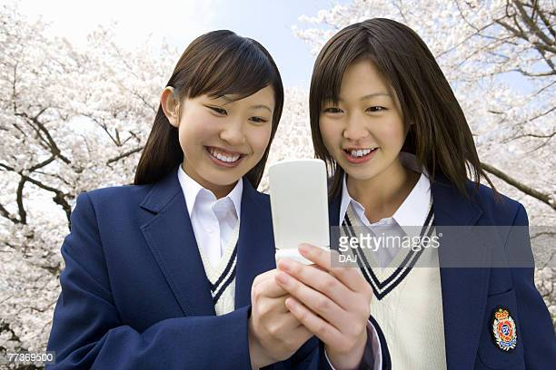 High school girls looking at mobile phone