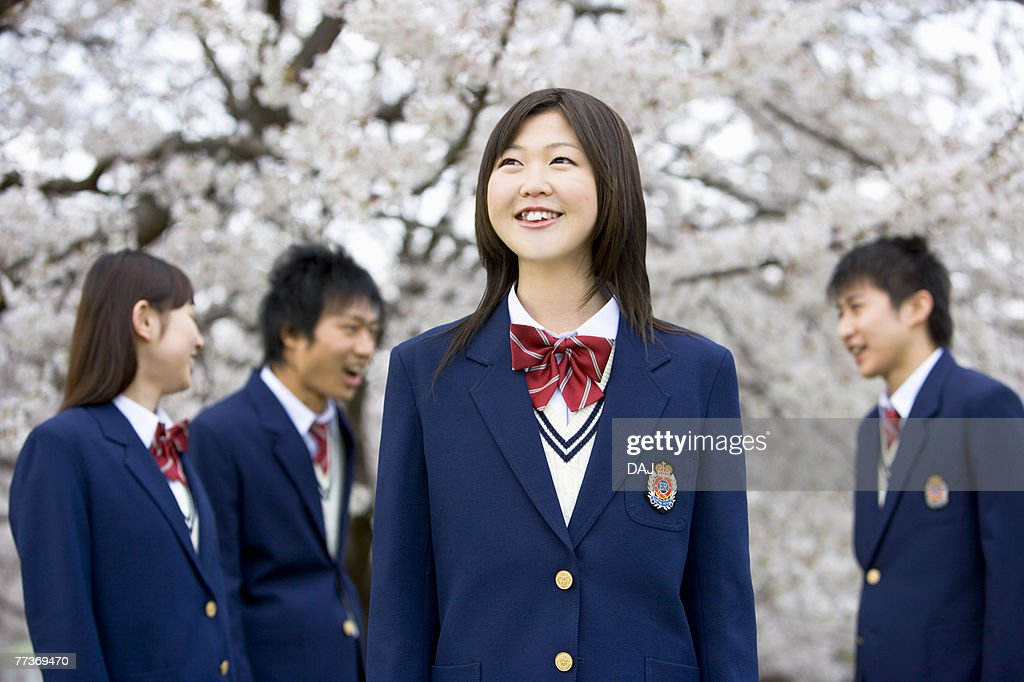 High School Students Under Cherry Blossoms, Differential Focus : Photo