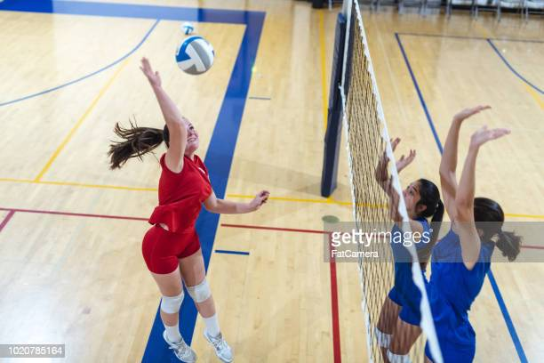 high school volleyball match - high school volleyball stock photos and pictures