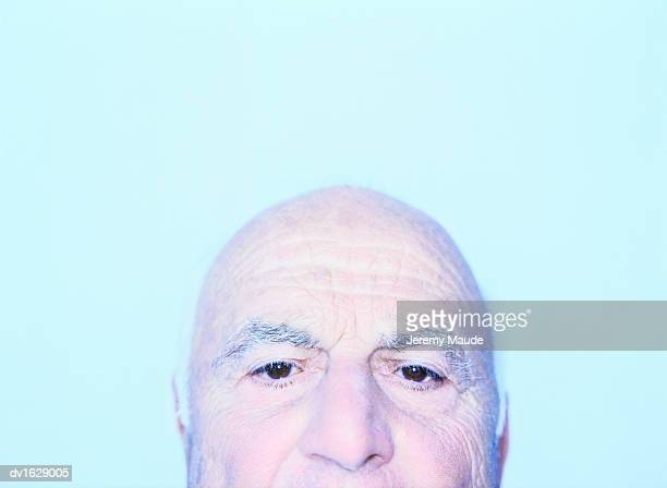 High Section of a Senior Bald Man