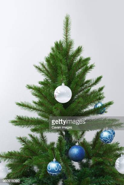 High section of Christmas tree against white background at home