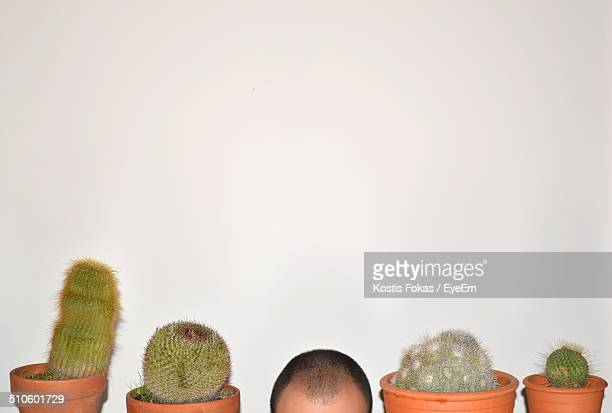 High section of human head with cactus plants