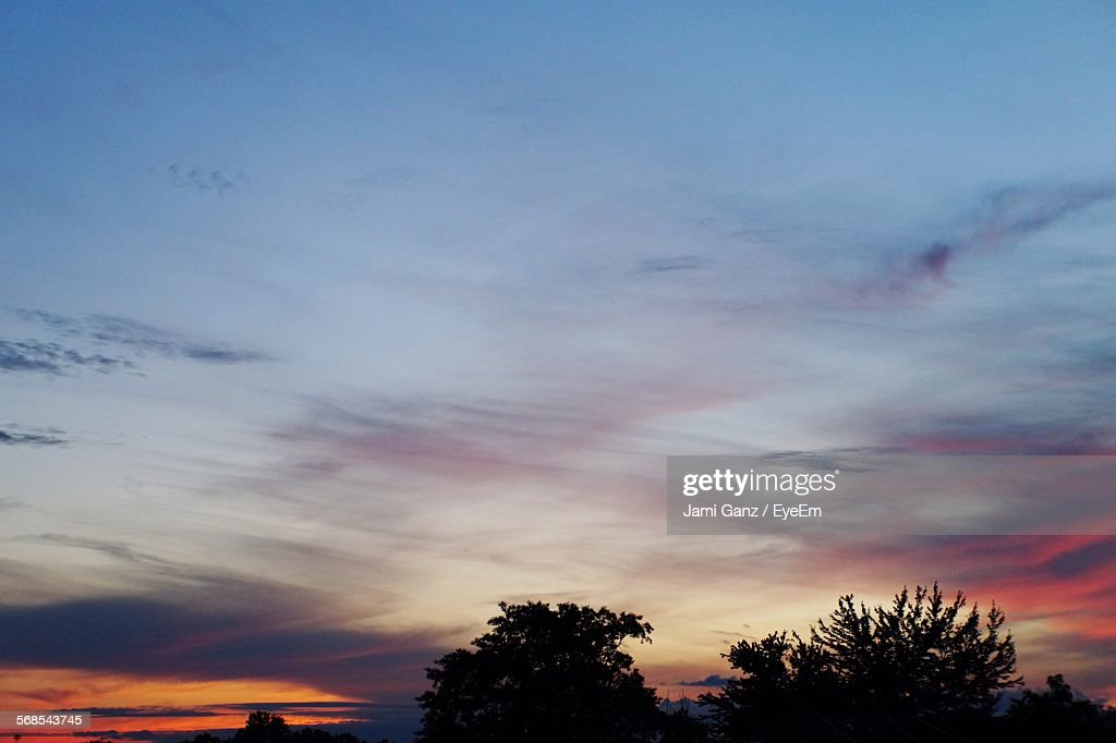 High Section Of Silhouette Trees Against Cloudy Sky During Sunset : Stock Photo