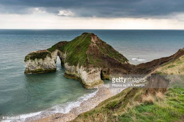 high stacks, flamborough head, north yorkshire, england - 炭酸石灰 ストックフォトと画像