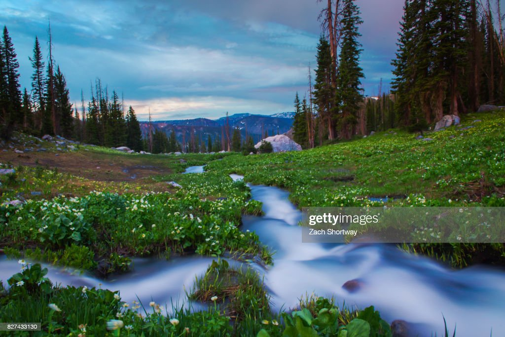 High Terrain Stream : Stock Photo
