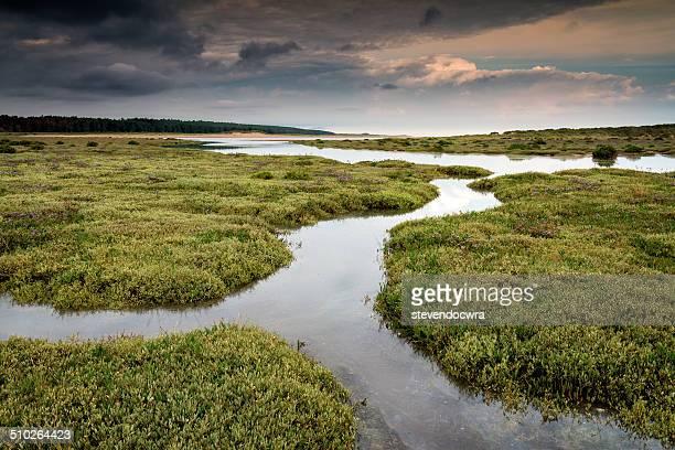 high tide at holkham beach - heather brooke ストックフォトと画像