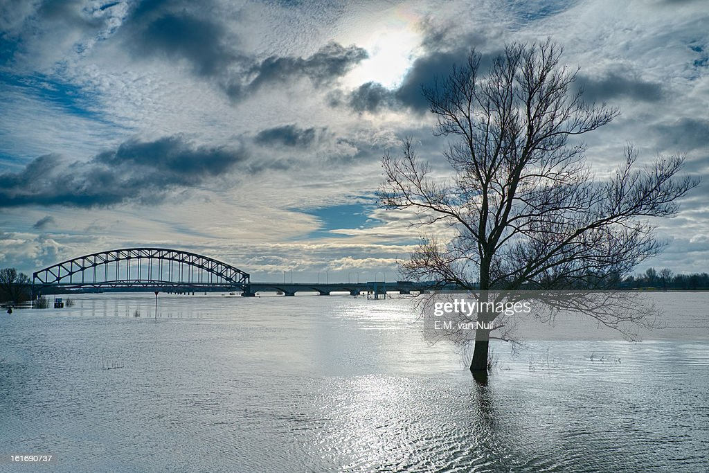 High tides in the river : Stockfoto
