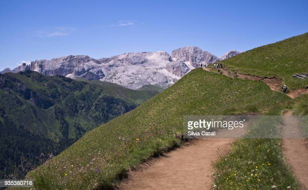 High trail on Italian Alps