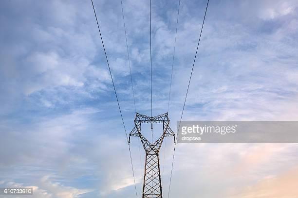 High voltage cage