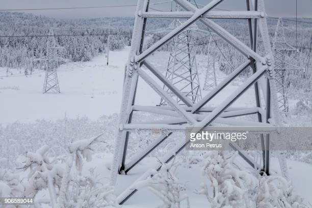 high voltage lines in foggy winter day - power line stock photos and pictures