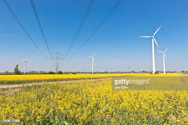 high voltage power line - schleswig holstein stock photos and pictures