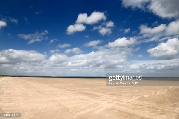 high wind on wide long st andrews west sands beach with blue sky and white clouds st andrews fife scotland uk - st. andrews scotland stock pictures, royalty-free photos & images