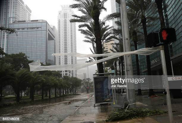 High winds blow through Brickell avenue as Hurricane Irma arrives on September 10 2017 in Miami Florida Hurricane Irma made landfall in the Florida...