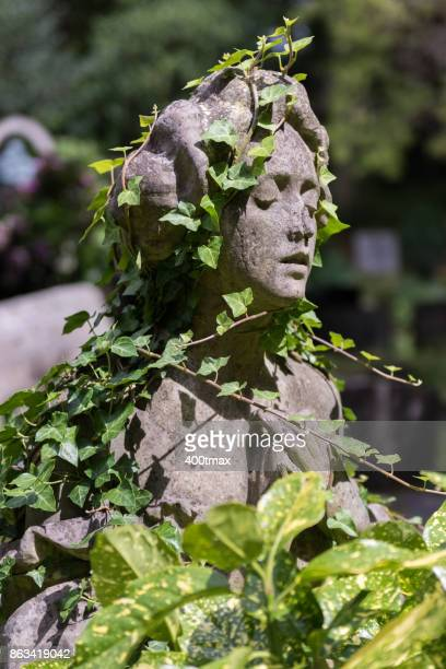 highgate cemetery - highgate stock pictures, royalty-free photos & images