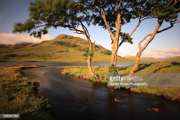 a highland burn highland burn. - wester ross stock pictures, royalty-free photos & images