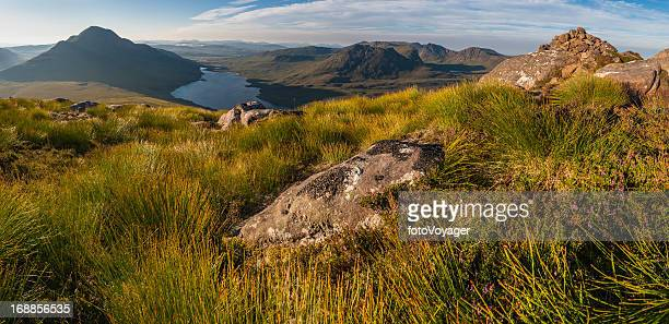 highland heather mountains idyllic dawn wilderness scotland - wester ross stock pictures, royalty-free photos & images