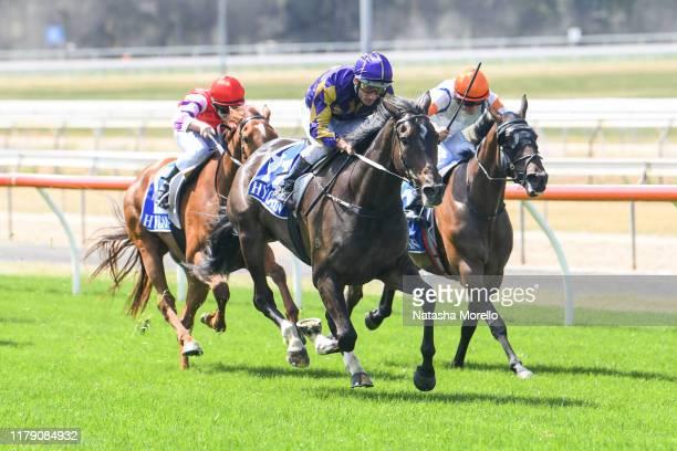 Highland Jakk ridden by Damien Oliver wins the Lloyd Sound Maiden Plate at Seymour Racecourse on October 31 2019 in Seymour Australia