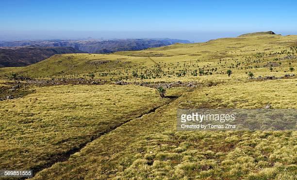 highland meadows at geech camp - altopiano foto e immagini stock
