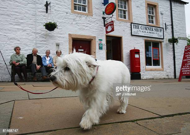 A highland terrier and local residents gather outside Glamis Post Office June 6 2008 in Glamis near Dundee Scotland The Post Office was earmarked...