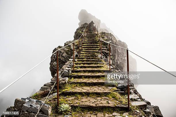 highland trail, madeira, portugal - nature stock pictures, royalty-free photos & images