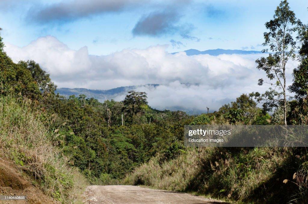 Highlands Highway running through rain forest at Tari, Papua New Guinea : News Photo