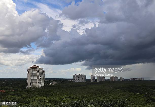 highrise buildings in the tropical rainforest, naples, florida, usa - st. petersburg florida stock pictures, royalty-free photos & images