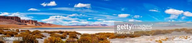 hoge-up bergen reserve - andes plane - altiplano andino - tara zoutmeer reserveren - salar de tara - flamingo refuge - panoramisch uitzicht - nature reserve stockfoto's en -beelden