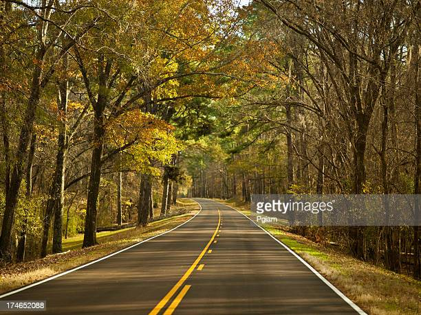 highway in autumn - mississippi stock pictures, royalty-free photos & images