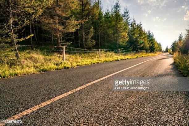 highway in inner mongolia province, china - straßenrand stock-fotos und bilder
