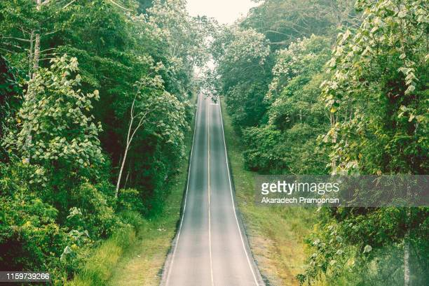 highway in the forest - shenandoah_national_park stock pictures, royalty-free photos & images