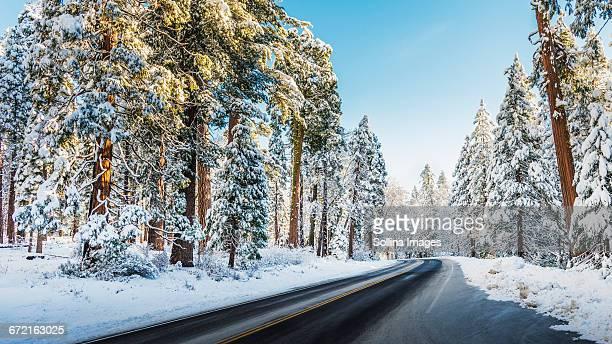 Highway in winter snow