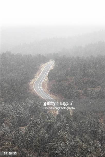 forest road ventisca tormenta de nieve - flanco de valle fotografías e imágenes de stock