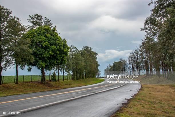 rodovia com duas pistas em cada sentido, em uma curva para a esquerda, molhada após a chuva - afiado - fotografias e filmes do acervo