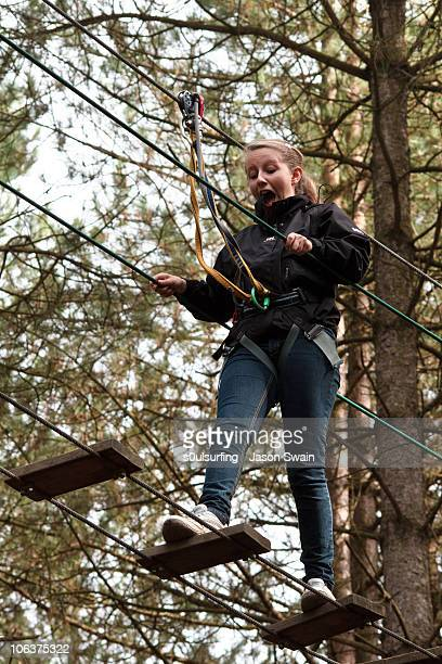 high-wire forest adventure - s0ulsurfing stock pictures, royalty-free photos & images