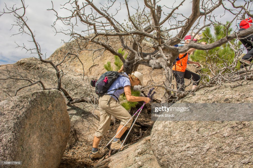 Mt Lemmon Special Events 2020.Hiing On Mt Lemon High Res Stock Photo Getty Images
