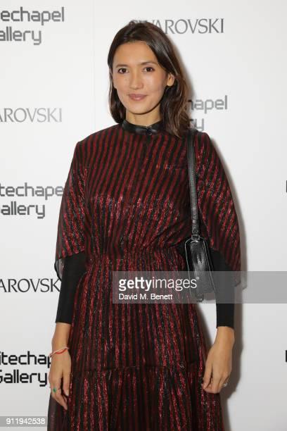 Hikari Yokoyama attends a gala dinner to celebrate Mona Hatoum as Whitechapel Gallery Art Icon with Swarovski at Whitechapel Gallery on January 29...