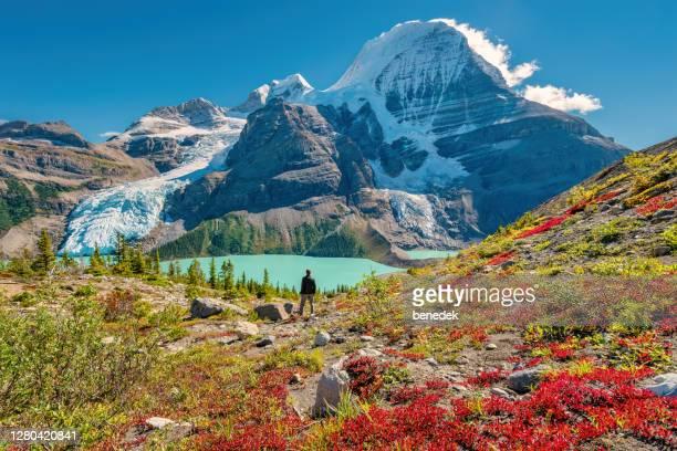 el excursionista admira la vista del monte robson canadian rockies canada - montañas rocosas canadienses fotografías e imágenes de stock