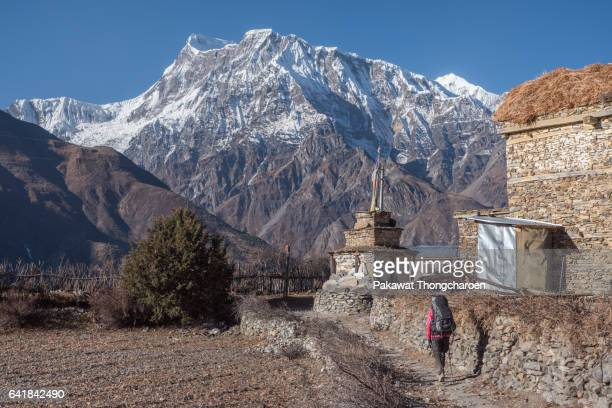 a hiker and annapurna iii, annapurna conservation area, nepal - annapurna conservation area stock photos and pictures