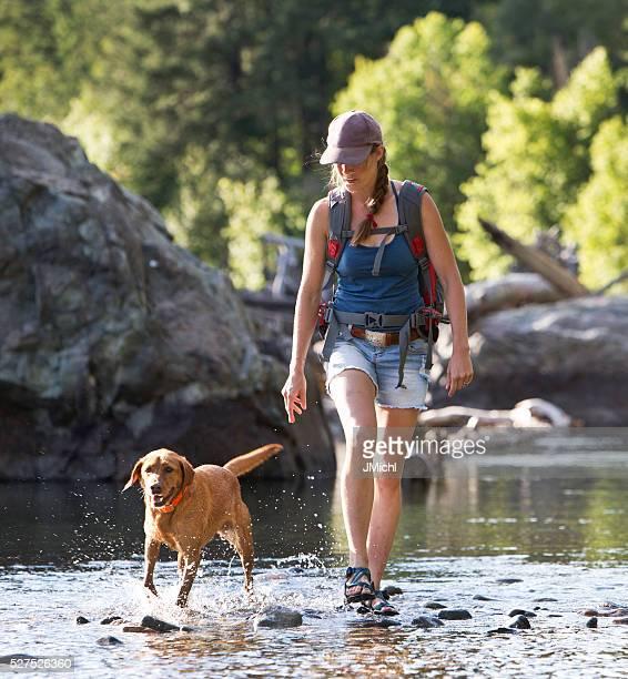 ハイカーと犬の交差点の浅い川の一部となっております。 - サンダル ストックフォトと画像